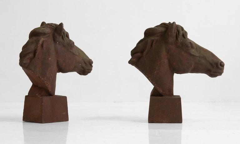 British Iron Horse Bust, England, circa 1960 For Sale
