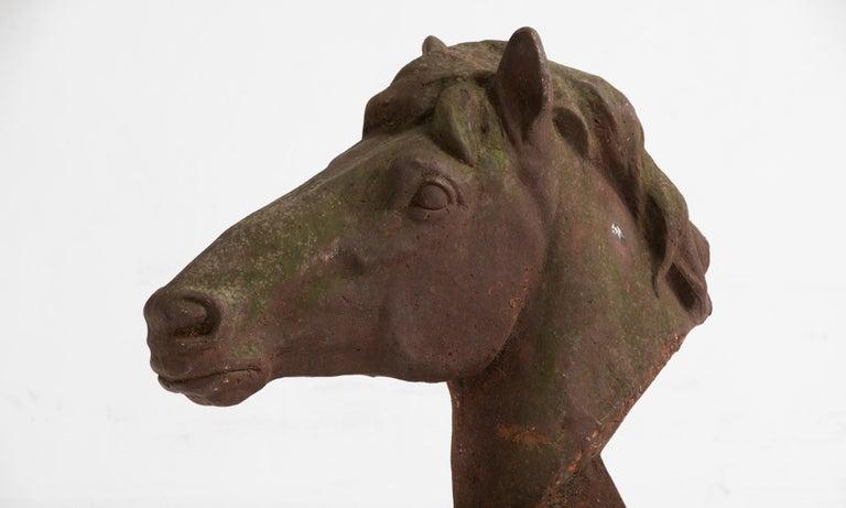 Cast Iron Horse Bust, England, circa 1960 For Sale