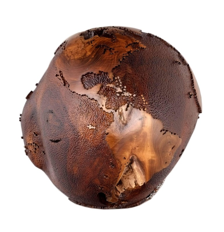 Don't let average describe your life, be extraordinary.  Extraordinary wooden globe made of teak root and 91 pieces of stainless steel bolts on a stainless steel plate layered between Africa and Antarctica continents following the teak root's