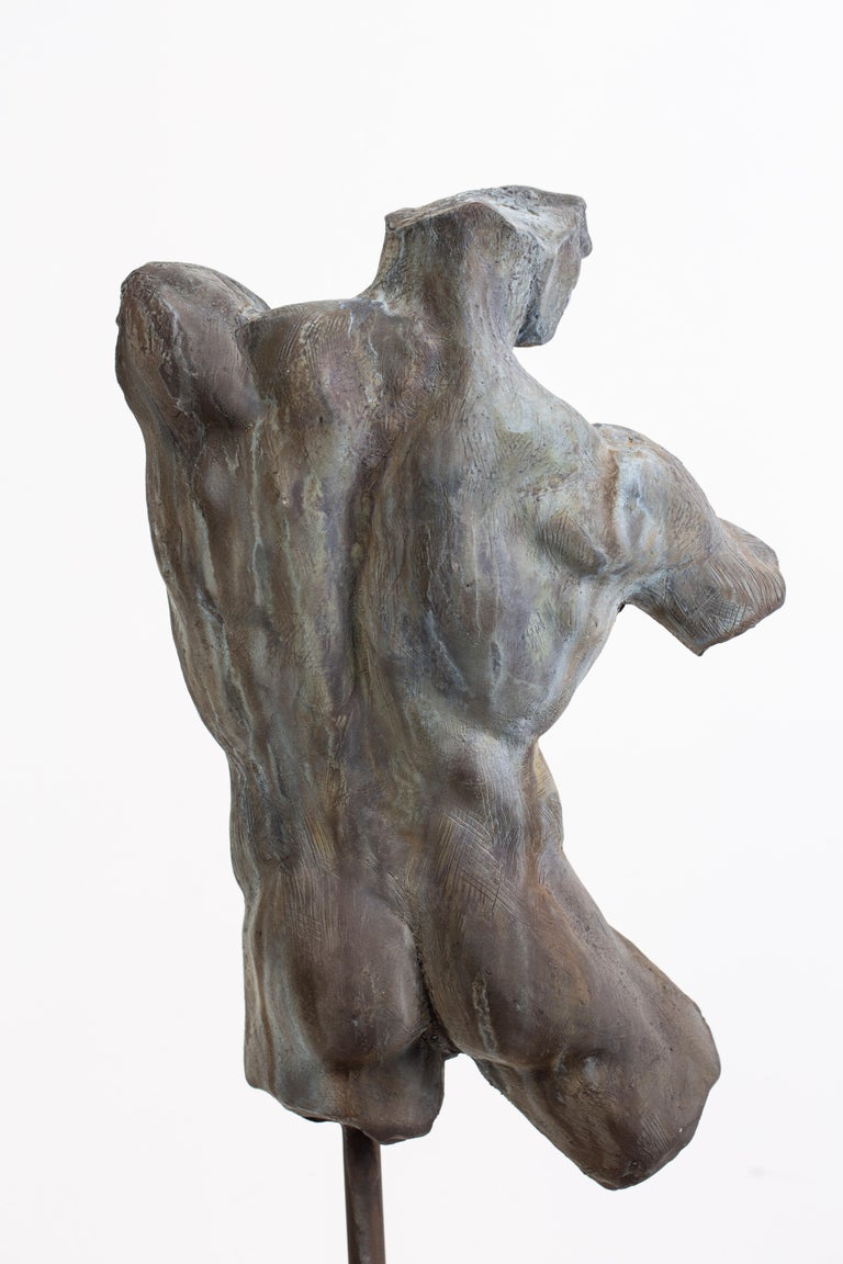 Iron Relic, Classical Male Nude Torso Fragment Sculpted in Bronze For Sale 3