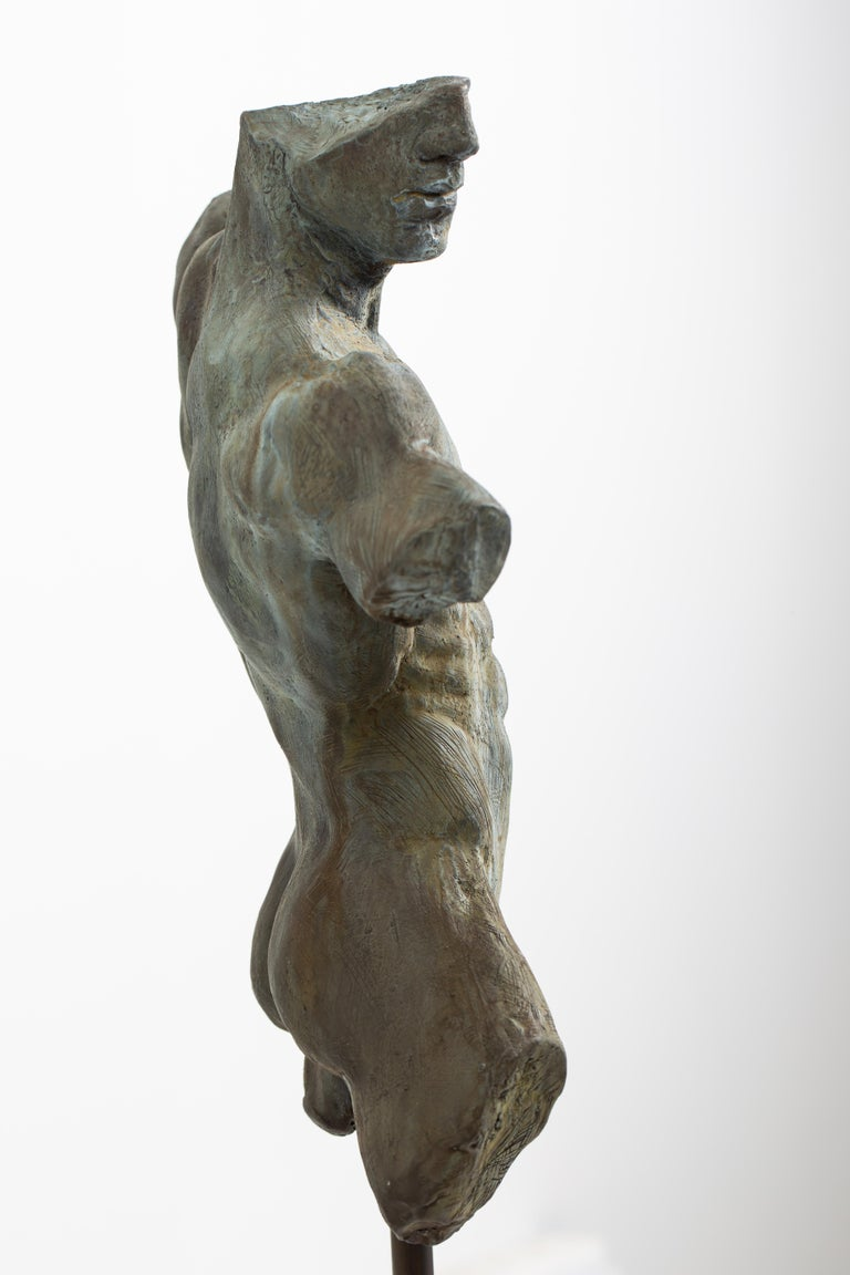 Iron Relic, Classical Male Nude Torso Fragment Sculpted in Bronze For Sale 5