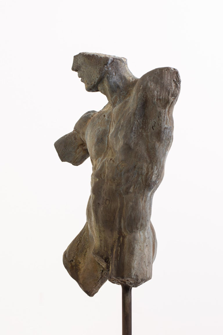 Iron Relic, Classical Male Nude Torso Fragment Sculpted in Bronze For Sale 6