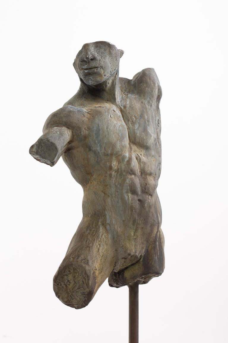 American Iron Relic, Classical Male Nude Torso Fragment Sculpted in Bronze For Sale