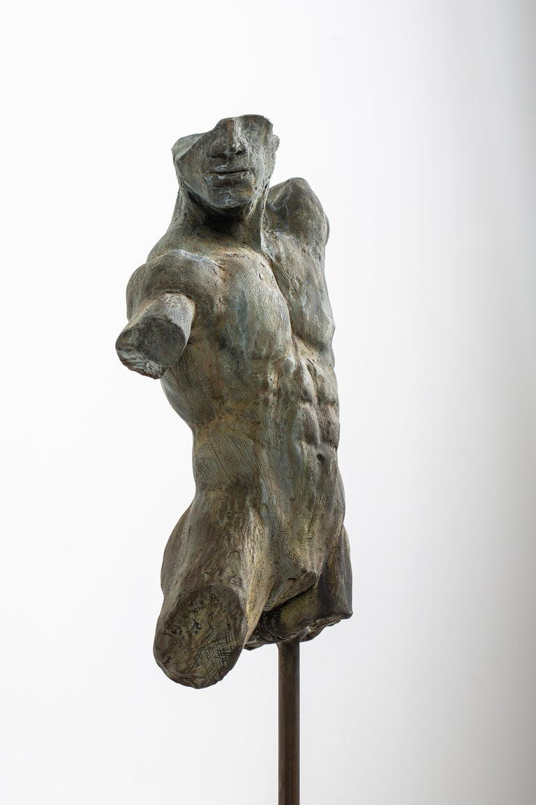 Iron Relic, Classical Male Nude Torso Fragment Sculpted in Bronze In New Condition For Sale In Chicago, IL