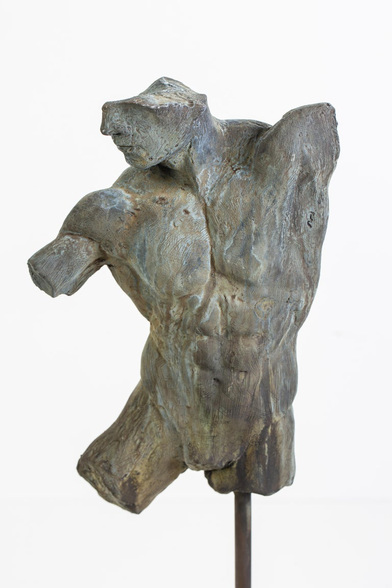 Contemporary Iron Relic, Classical Male Nude Torso Fragment Sculpted in Bronze For Sale