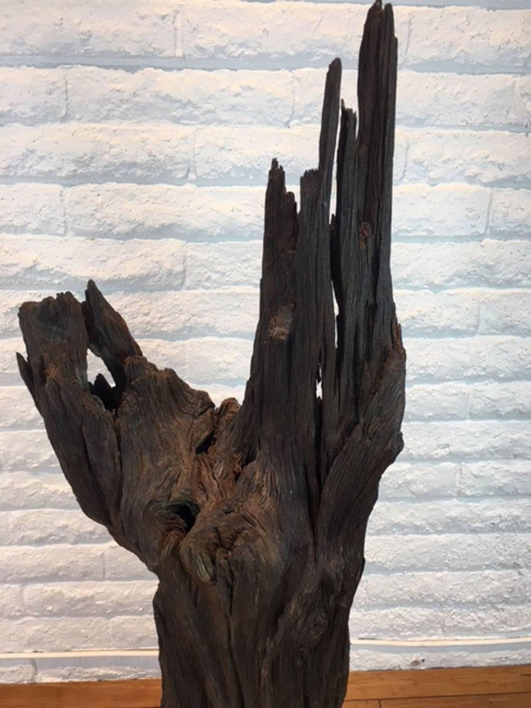 Contemporary Ironwood and Steel Sculpture For Sale