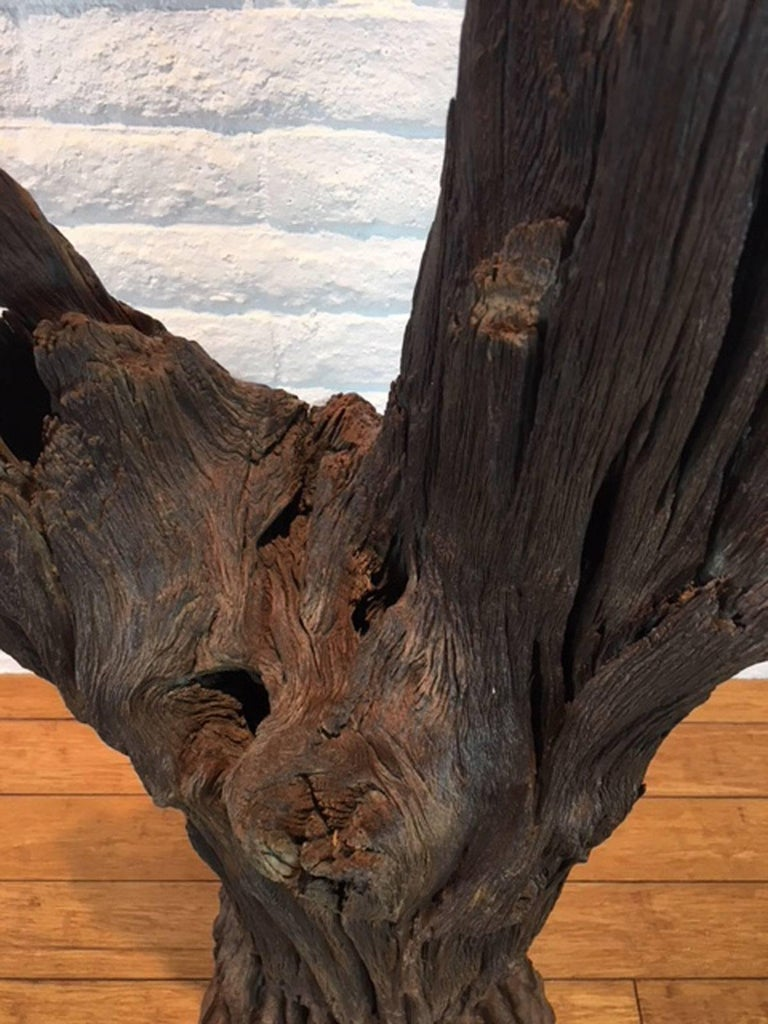 Ironwood and Steel Sculpture For Sale 1