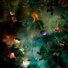 Avant que #6 - Floral landscape colorful blue dominant contemporary photograph