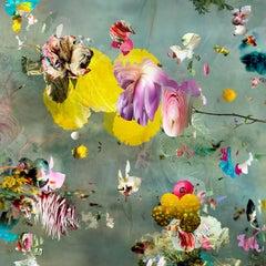 New Rome #8- Floral landscape soft pastel color contemporary photograph