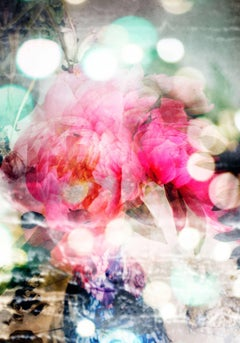 Petites Natures #13- abstract soft color photo of ponies flower pink white dots