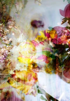 Petites Natures #4- vibrant abstract contemporary floral photo with yellow pink