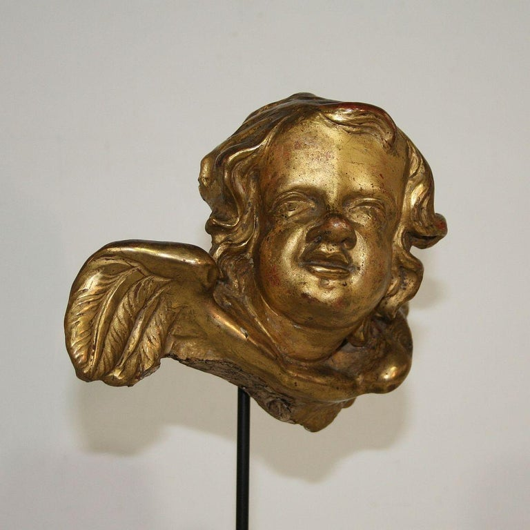 Italian 18th Century Baroque Gilded Angel Heads For Sale 5