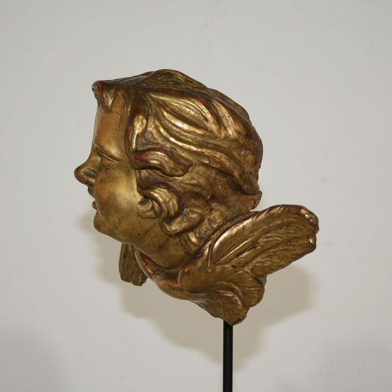 Italian 18th Century Baroque Gilded Angel Heads For Sale 6