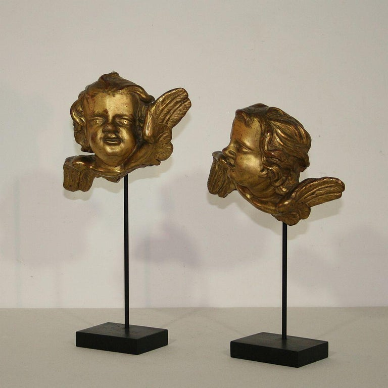 Stunning pair of carved wooden angel heads with their original gilding