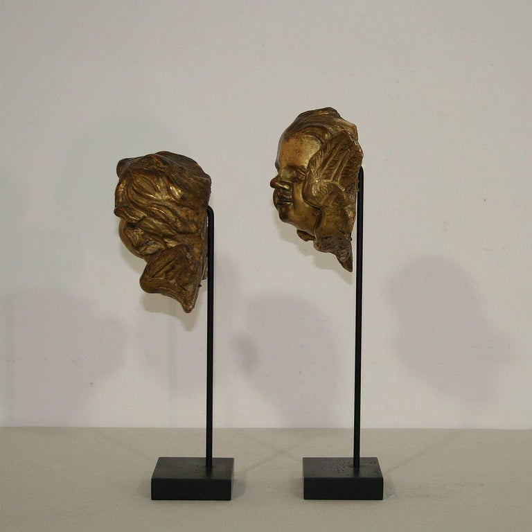 Wood Italian 18th Century Baroque Gilded Angel Heads For Sale