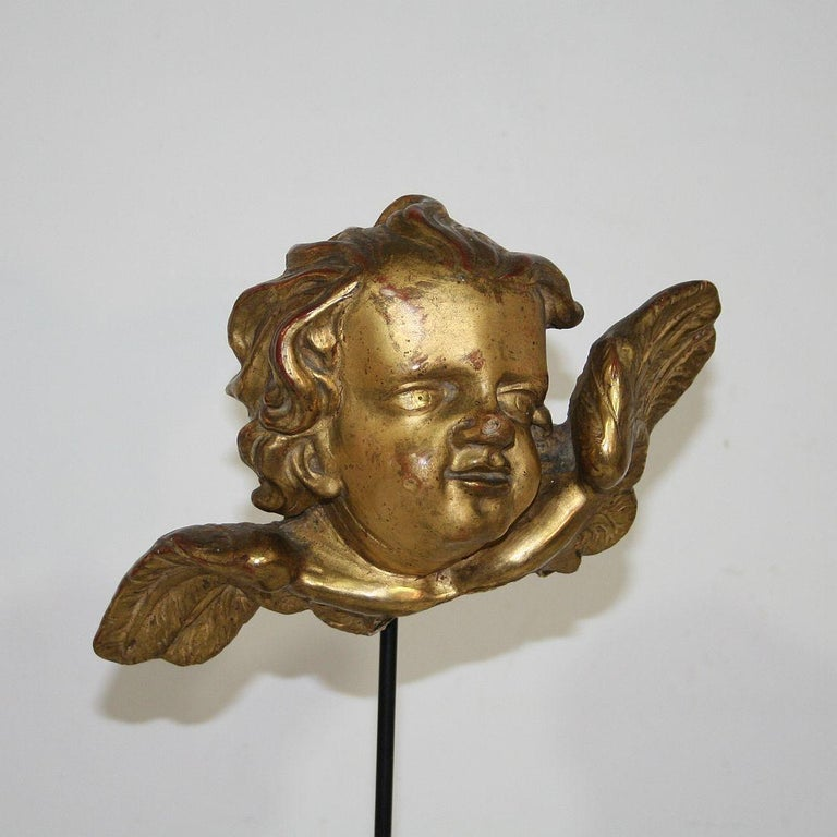 Italian 18th Century Baroque Gilded Angel Heads For Sale 1