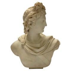 Italian 19 Century Marble Bust of Apollo