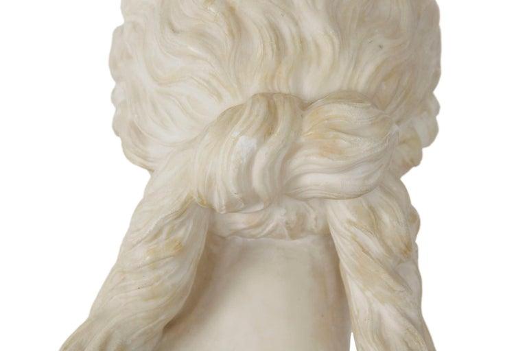 Italian 19th Century Grand Tour Marble Bust of Capitoline Venus 12