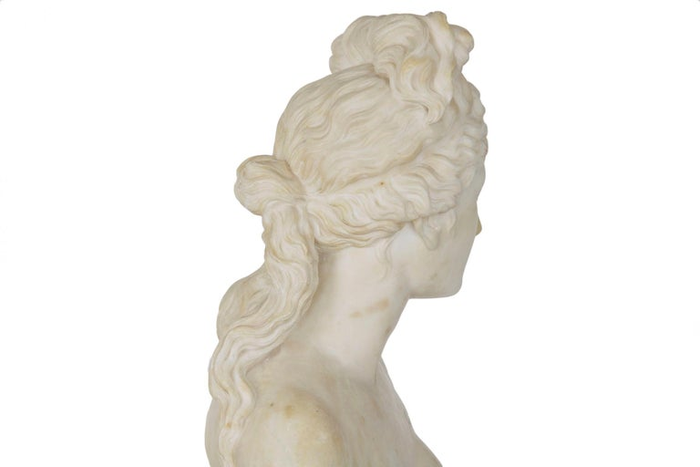 Italian 19th Century Grand Tour Marble Bust of Capitoline Venus 14