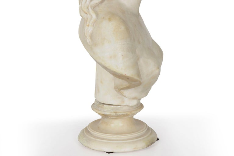Italian 19th Century Grand Tour Marble Bust of Capitoline Venus 15