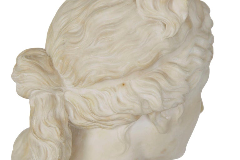 Italian 19th Century Grand Tour Marble Bust of Capitoline Venus 16