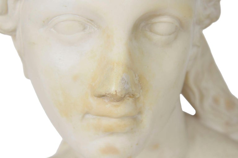 Italian 19th Century Grand Tour Marble Bust of Capitoline Venus 1