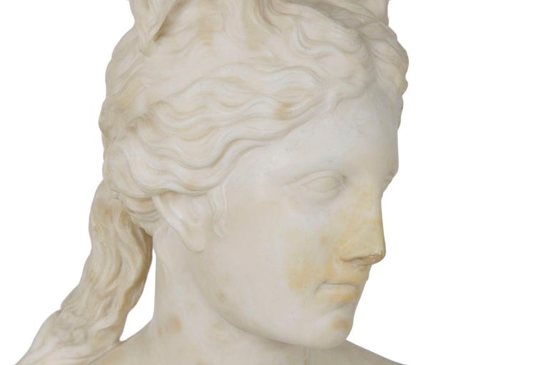 Italian 19th Century Grand Tour Marble Bust of Capitoline Venus 2