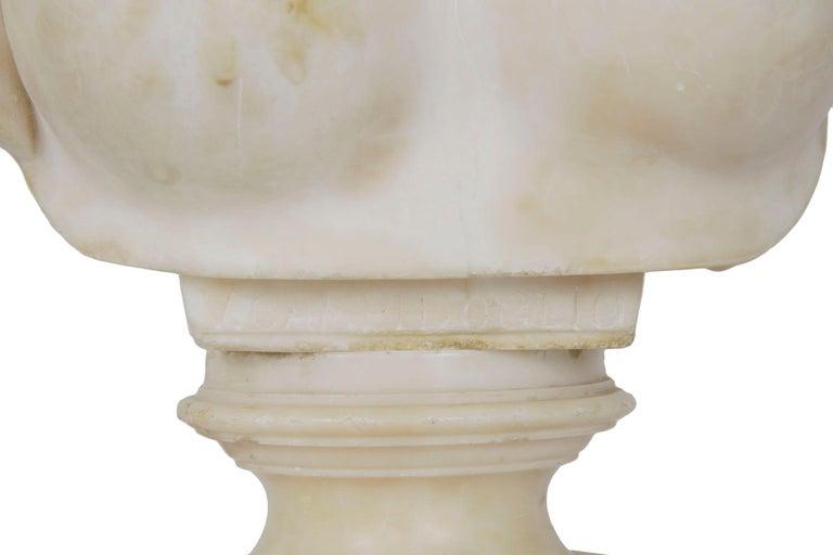 Italian 19th Century Grand Tour Marble Bust of Capitoline Venus 3
