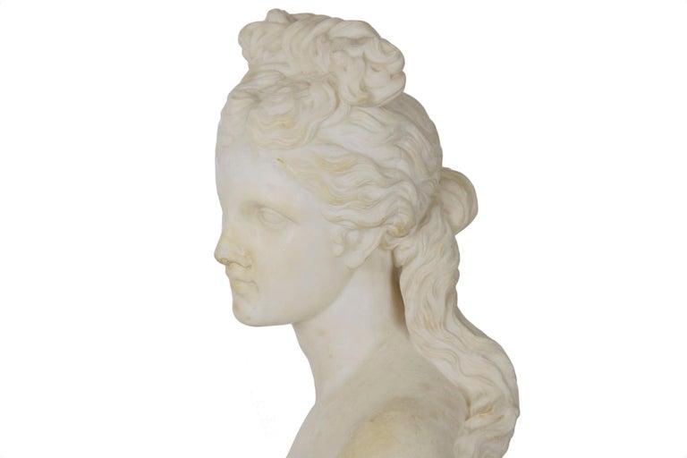 Italian 19th Century Grand Tour Marble Bust of Capitoline Venus 5