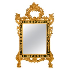 Italian 19th Century Louis XV Style Giltwood and Polychrome Mirror