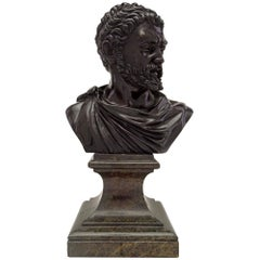 Italian 19th Century Patinated Bronze and Marble Bust