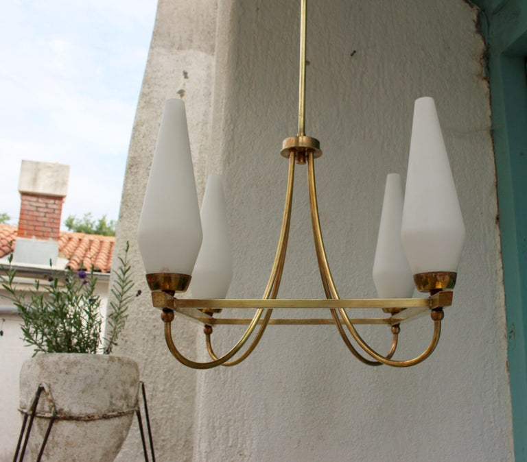 Mid century Italian brass chandelier with the opaline four shades.