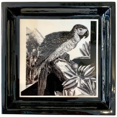 """Italian Contemporary """"Black and Wild"""" Collection Parrot Porcelaine Pocket Tray"""