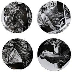 Italian Craftsmanship Set of Four Decorative Plates in Printed Porcelain