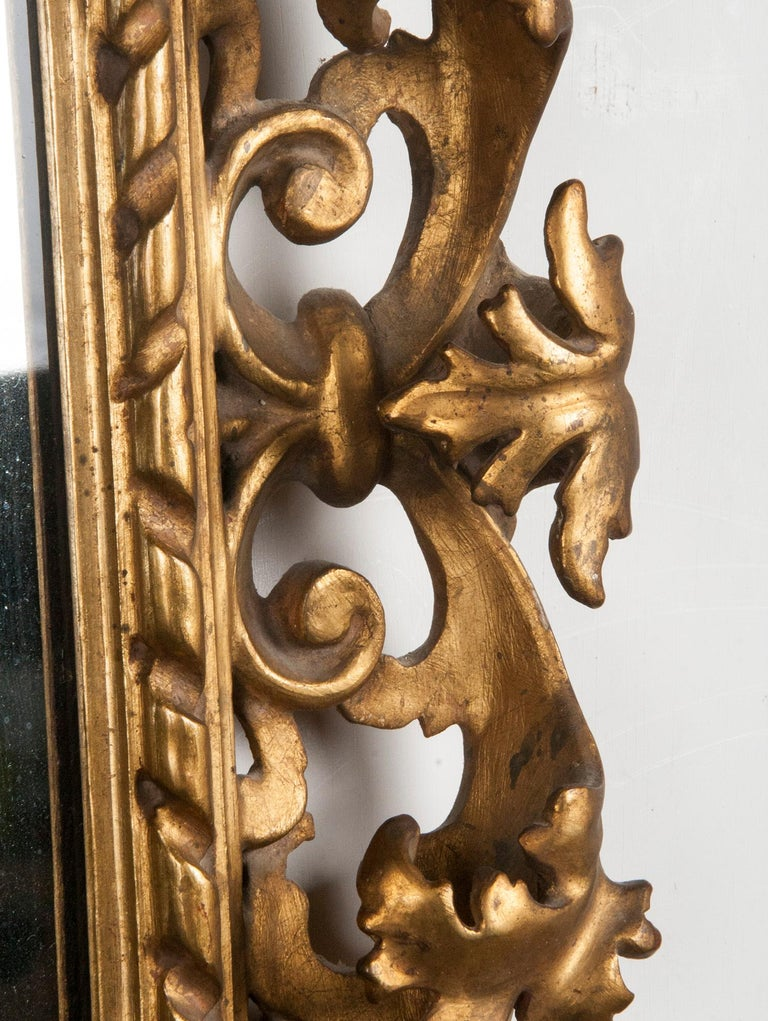 Italian Hand Carved and Gold Leaf Gilded Baroque Style Mirror, 1890-1900 For Sale 2