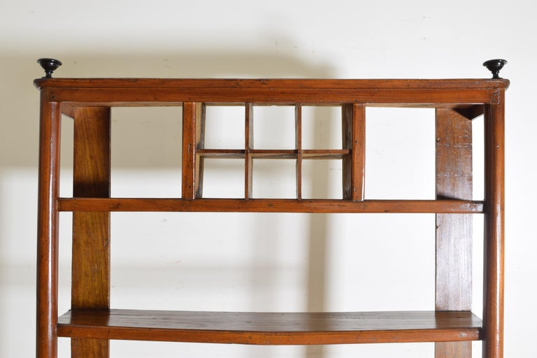 Italian Late Neoclassic Walnut Étagère with Two Side Drawers, Mid-19th Century For Sale 1