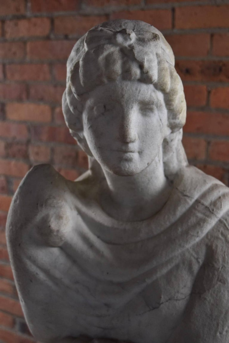 Italian Marble Statue of Livia or Pudicity, 19th Century after the Antique  For Sale 3