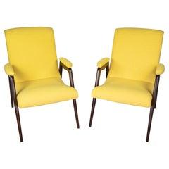 Italian Mid-Century Modern Wooden, Brown, Yellow Lounge Chairs, 1950s