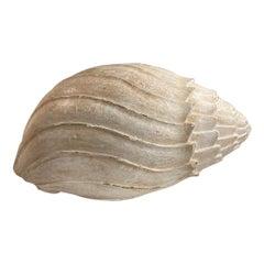 Italian Mid-Century Monumental Carved Wood Painted Sea Shell