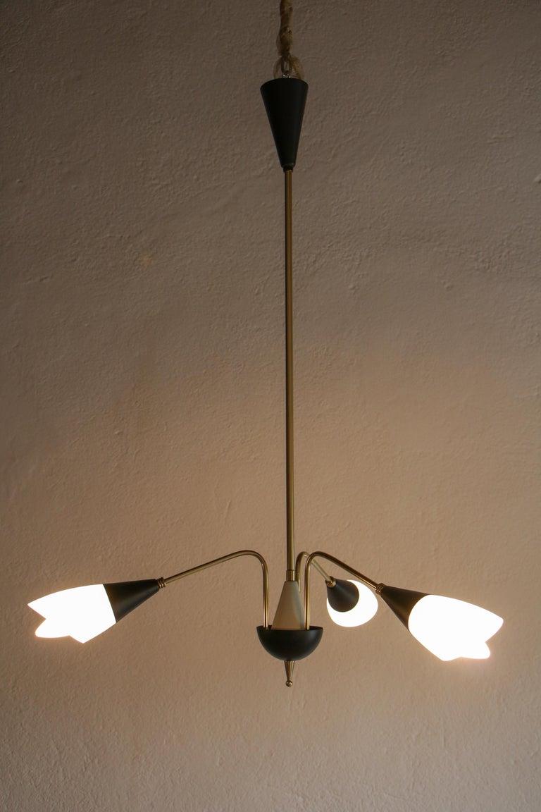 Italian Mid-Century Chandelier Pendant Lamp Attributed to Stilnovo, 1960s For Sale 2
