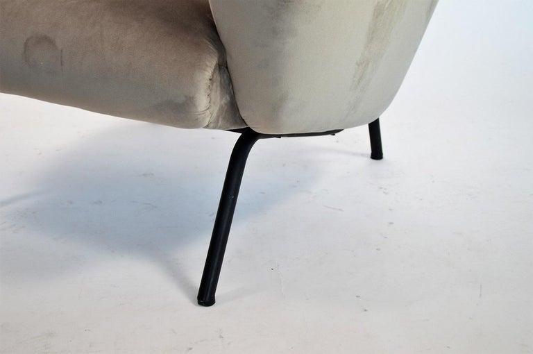 Italian Midcentury Armchair in Grey Soft Velvet by Rossi di Albizzate, 1960s 4