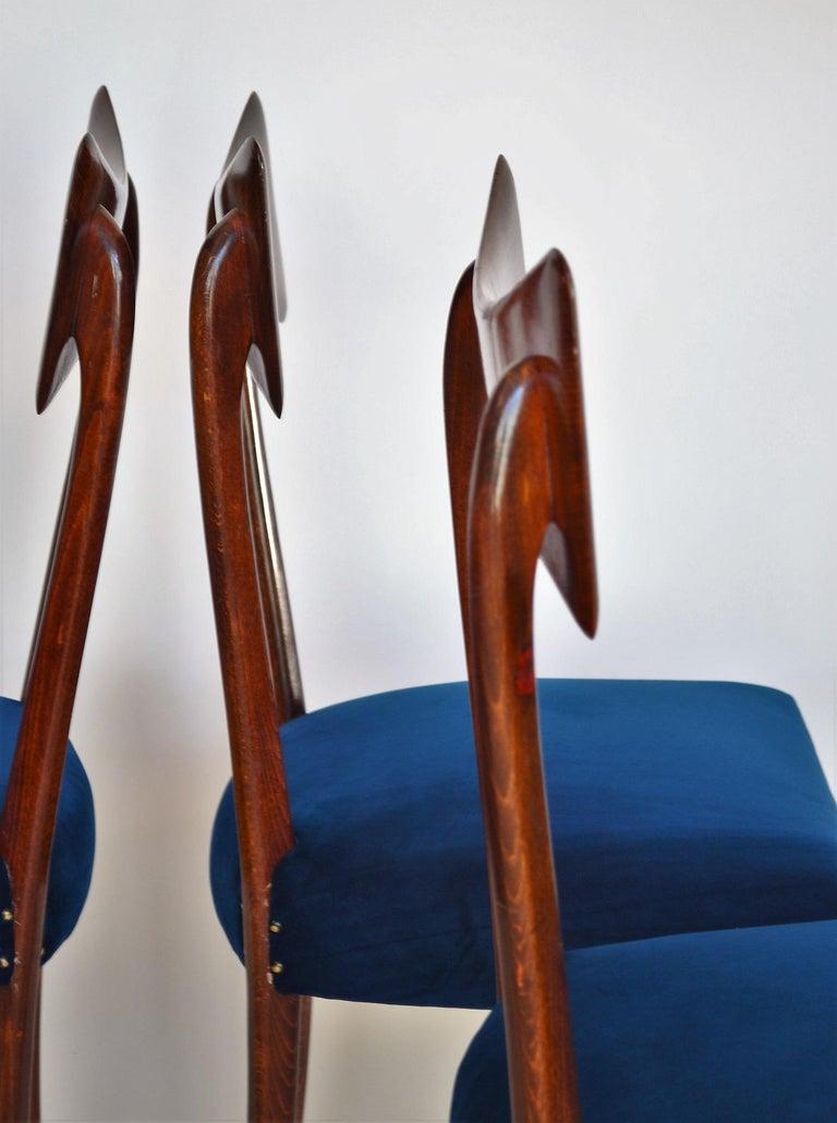Italian Midcentury Beechwood Dining Chairs Restored in Blue Velvet, 1950s For Sale 5