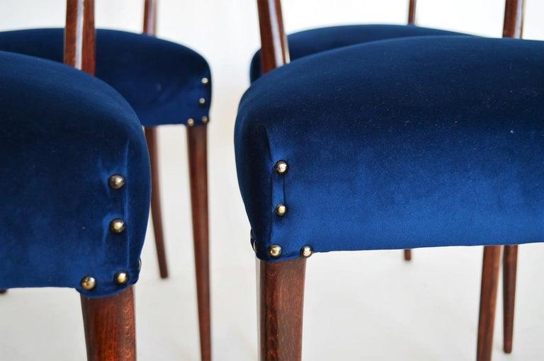 Italian Midcentury Beechwood Dining Chairs Restored in Blue Velvet, 1950s For Sale 6