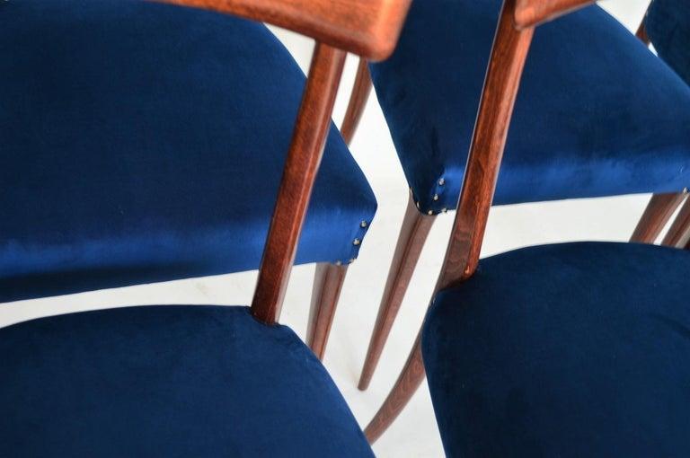 Italian Midcentury Beechwood Dining Chairs Restored in Blue Velvet, 1950s For Sale 8