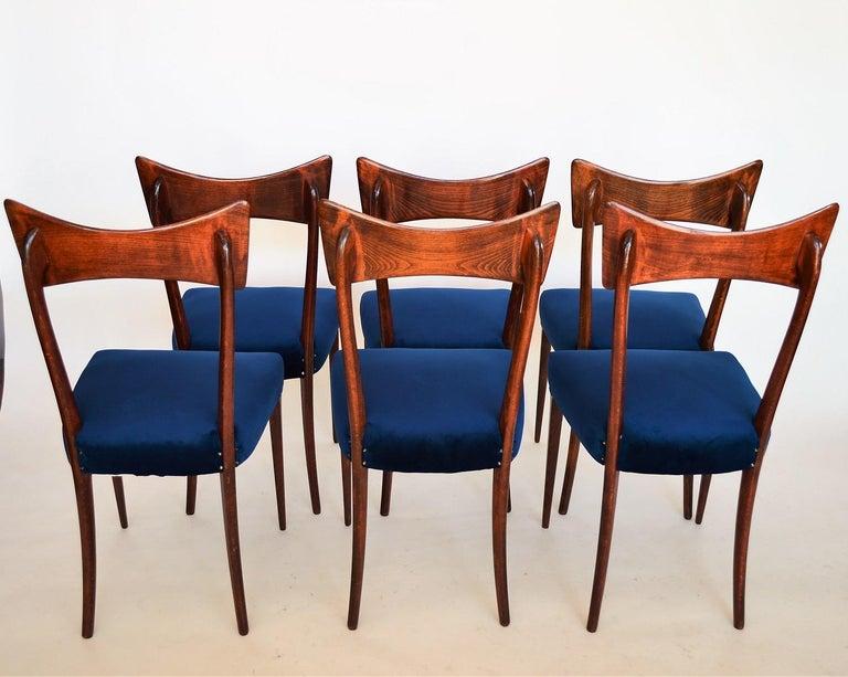 Italian Midcentury Beechwood Dining Chairs Restored in Blue Velvet, 1950s For Sale 10