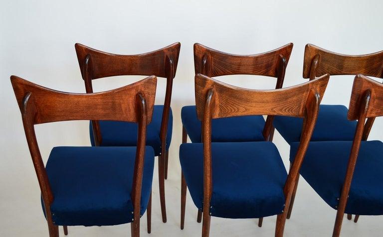 Italian Midcentury Beechwood Dining Chairs Restored in Blue Velvet, 1950s For Sale 11