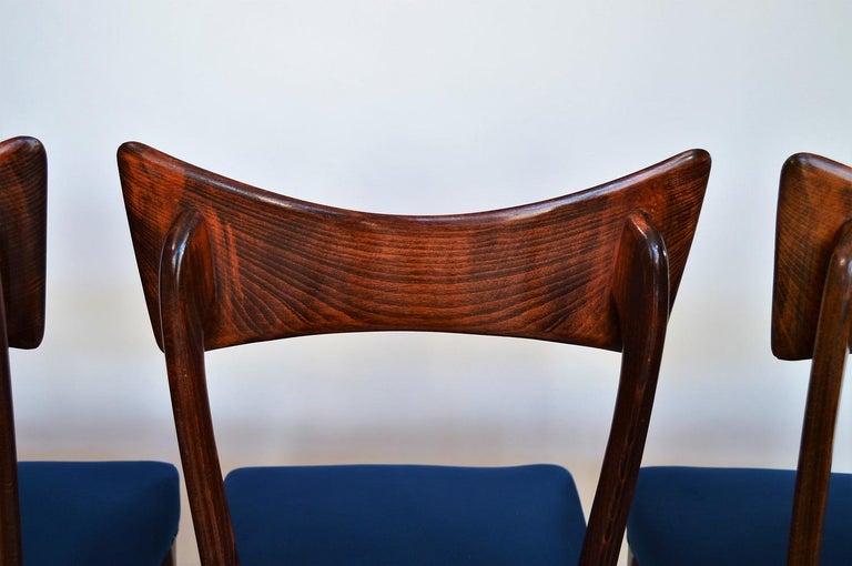 Italian Midcentury Beechwood Dining Chairs Restored in Blue Velvet, 1950s For Sale 12