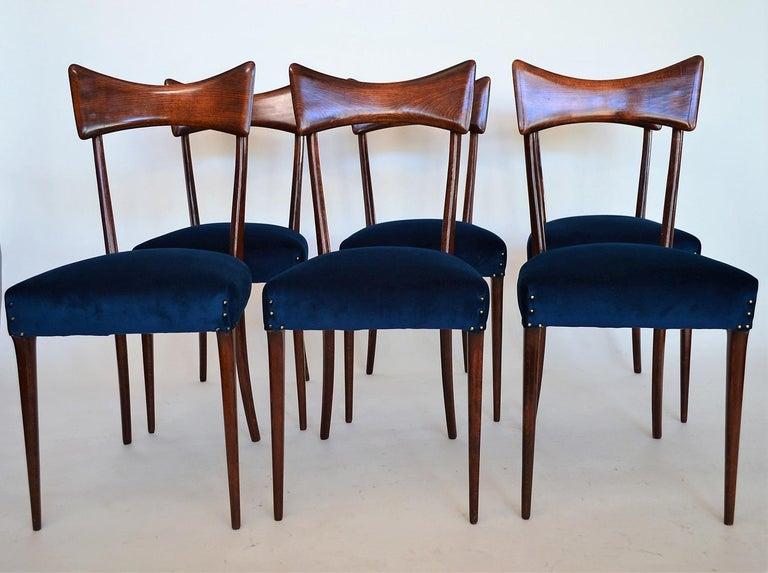 Italian Midcentury Beechwood Dining Chairs Restored in Blue Velvet, 1950s For Sale 14