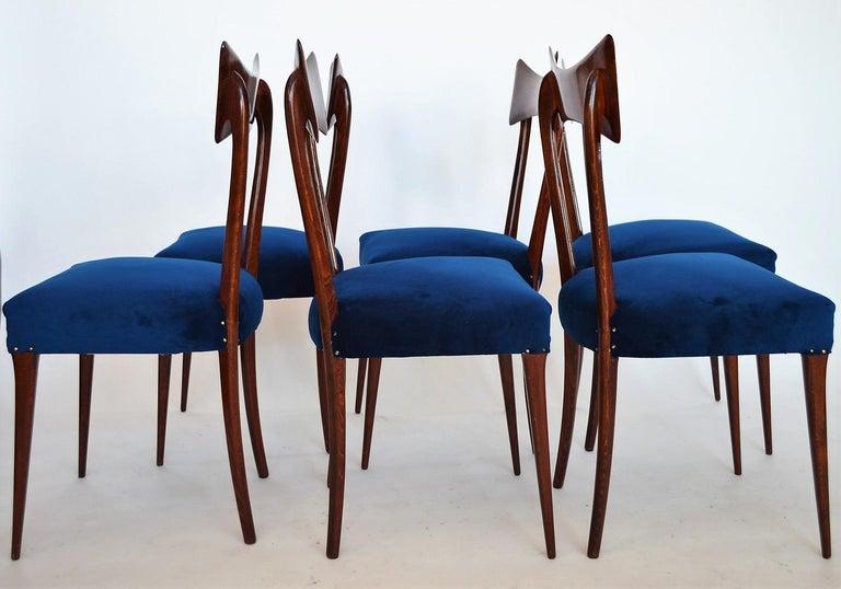 Mid-Century Modern Italian Midcentury Beechwood Dining Chairs Restored in Blue Velvet, 1950s For Sale