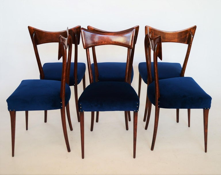 Italian Midcentury Beechwood Dining Chairs Restored in Blue Velvet, 1950s In Good Condition For Sale In Clivio, Varese